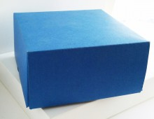Blue box cardboard with no printing